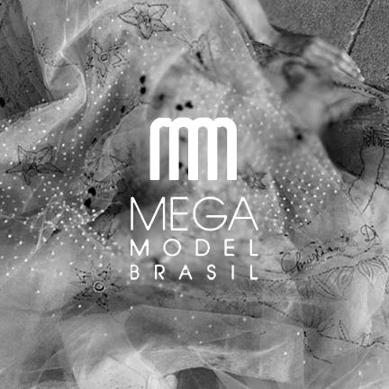 Mega model